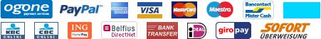 Paypal, Visa, Mastercard, CB... de nombreux systemes de paiement securisé possibles