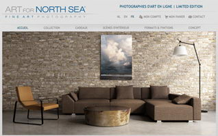 Site internet ecommerce art for north sea